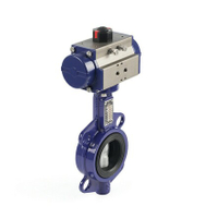Pneumatic Wafer Butterfly Valves